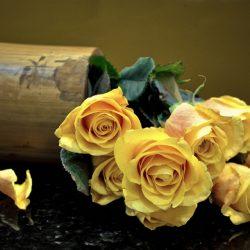 Т-Цветы-001