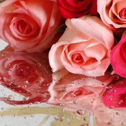 Т-Цветы-015