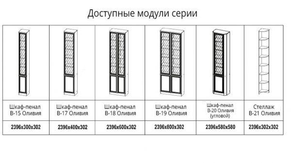 Модульная библиотека (Ол)