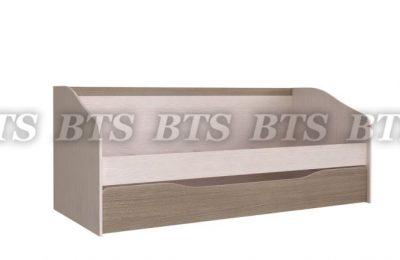 Детская Паскаль Кровать с ящиком (2 спальных места) (БТС)