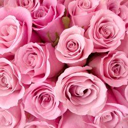 Т-Цветы-014