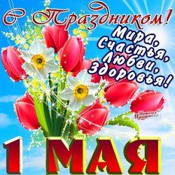 1,2 МАЯ - ВЫХОДНОЙ      3-10 мая с 9.00 до 16.00